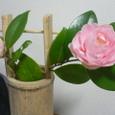 竹の花いれと椿